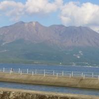 穏かな桜島