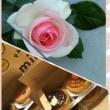 バラが 咲いた🌹