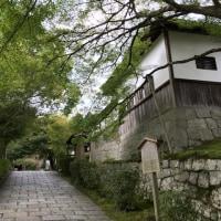 京都 修学院界隈 20161022