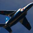 入間航空祭 ブルーインパルス ソロ