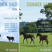 【サマーセール2016(Summer Sale、1歳馬)】~総合結果概要(最高額馬紹介や市場長インタビュー等)