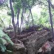 茶臼山 7  ~子茶臼山~