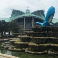 沖縄国際の会場の写真
