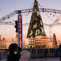 海辺のクリスマスツリーを見てきました ☆