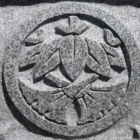宮川姓と杉江姓 その特有な紋の在り処