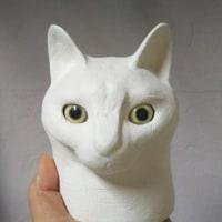 猫の眼完成