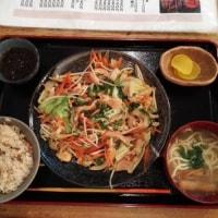 八重山・石垣島(5)