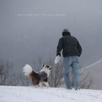 粉雪の山で