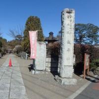 天覧山から日和田山(その1)
