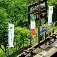 土讃線大歩危駅を望む!
