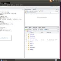 Ubuntu 14.04 + Fcitx + RStudio 0.99�����ܸ�����Ϥ�����ˡ