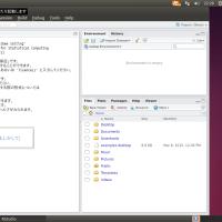 Ubuntu 14.04�ʹ� + Fcitx + RStudio 0.99�����ܸ�����Ϥ�����ˡ