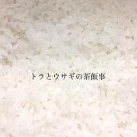 お米のラインナップ◡̈ 只今26種類あります♪