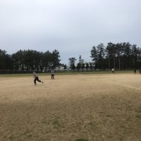 新潟大学アイビスと新潟医療福祉大学スカーレットの合同練習が4/30(日)に新潟大学にて行われます!