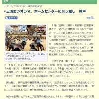 三国志ジオラマ、ホームセンターに引っ越し 神戸/神戸新聞NEXT
