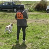 全猟千葉県支部猟野競技会