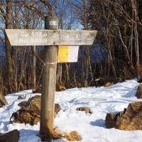 冬の大岳山を歩く