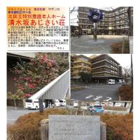 花巡り 「椿・山茶花-24」 田端駅近辺