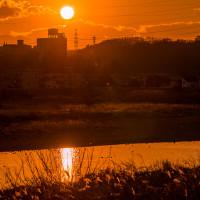 1月22日(月)ダイヤモンド富士-西府緑地前堤防☓