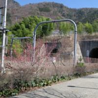 大日影トンネル遊歩道・・・ 鉄道隧道を歩ける場所はなかなか珍しいです。