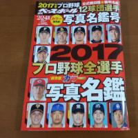 2017 プロ野球 写真名鑑