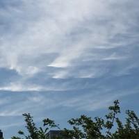 変わった巻雲