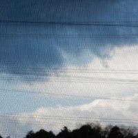 2月 17日  (金曜日)  曇り