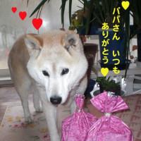 ★今日はバレンタインデー★