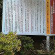 千葉市千葉神社に行く