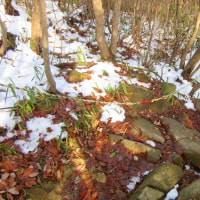 14 鈴ヶ峰・鬼ヶ城山(320・282m:西区)縦走登山  北側斜面に残雪も