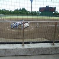 夏の高校野球 埼玉県予選