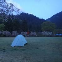 北陸 シャクナゲの富士写ヶ岳~火燈山