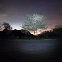 妙義山にて星空の撮影