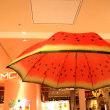 季節にぴったりの傘みっけ!