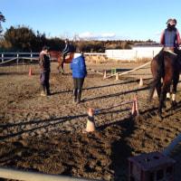 馬が好きになるきっかけは、色々と