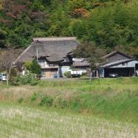 千秋公園ウォーク(2)
