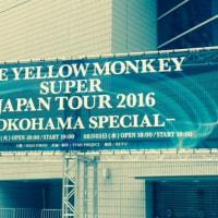 THE  YELLOW  MONKEY  Live れぽ