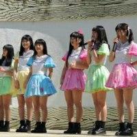 dela太閤花見茶会2017/4/2