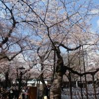 スポコミ・カワラ版 4月29日(土)先勝