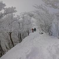 高見山2017