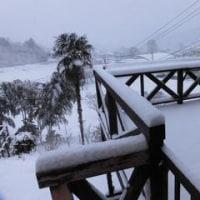 夢宇窯の里冬景色