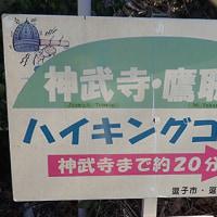 鷹取山をハイキング