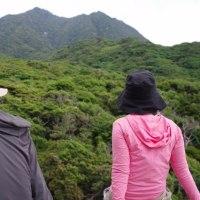 気持ちの良いシーブルー!【屋久島世界自然遺産も森あるきツアー】