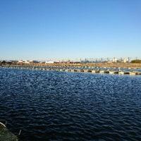 羽生吉沼に行ってきた。2017年2月S会は風の中