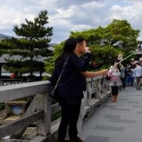 ★京都~嵐山~天龍寺~渡月橋~