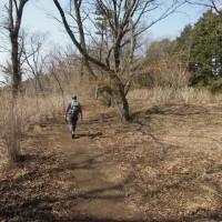 マッキーの山登り:湯河原駅~城願寺~城山~しとどの岩屋~湯河原梅林~鍛冶屋バス停