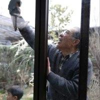 おじいちゃんと窓ふき