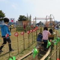 風吹く伊豆ドライブ その1 ( 風の花祭り )