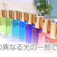 数秘&カラー2