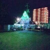 クリスマスペイジェント(聖誕劇)準備、佳境を迎える